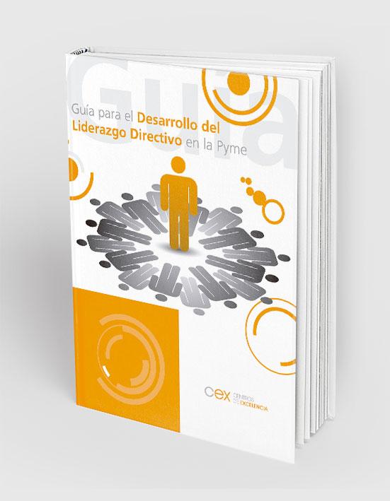 Guía para el desarrollo del liderazgo directivo