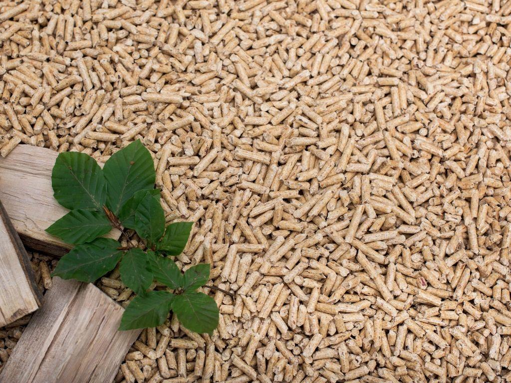 Bioeléctrica de Garray / Grupo Gestamp Biomass. Integración de procesos industriales: Producción E. Renovables con Biomasa, Producción de CO2, Producción de vegetales en Invernadero y (futuro) producción de fertilizantes