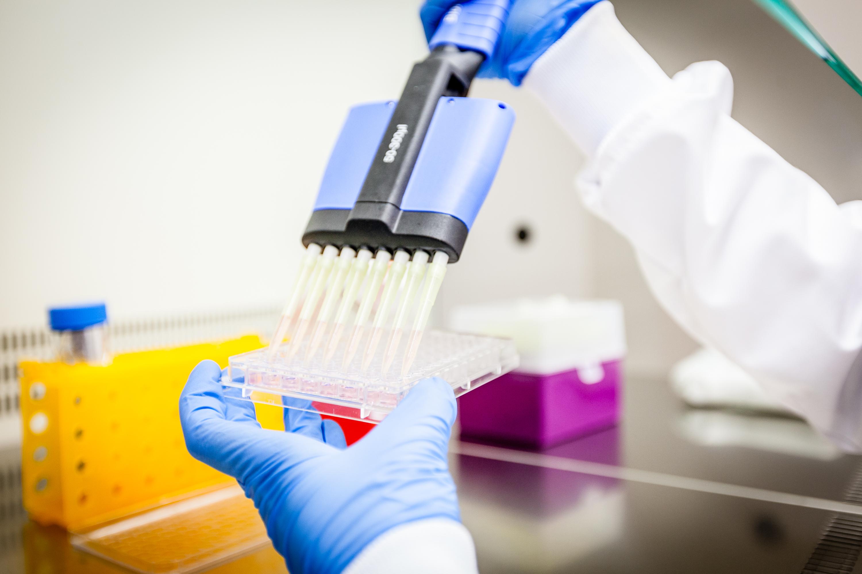 Premio QIA 2019. Ganador categoría Social y sanitario. ANTALGENICS S.L. Mejorando compuestos naturales: Diseño de un neurocosmético innovador para calmar la piel sensible. (Valencia).