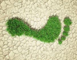 El Centro Tecnológico del Calzado de La Rioja. Calzado No-Trace. Desarrollo de una nueva línea de zapatos con un mínimo impacto ambiental, siguiendo pautas de ecodiseño y economía circular.